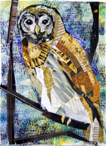 22-jan-barred-owl