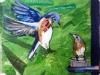 29 MAR Baby Bluebird.jpg