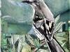 Mockingbird, collage