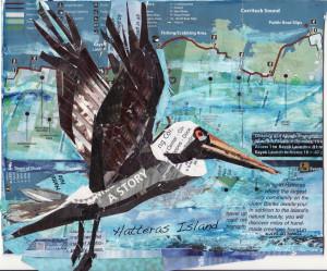 26 JUNE Pelican